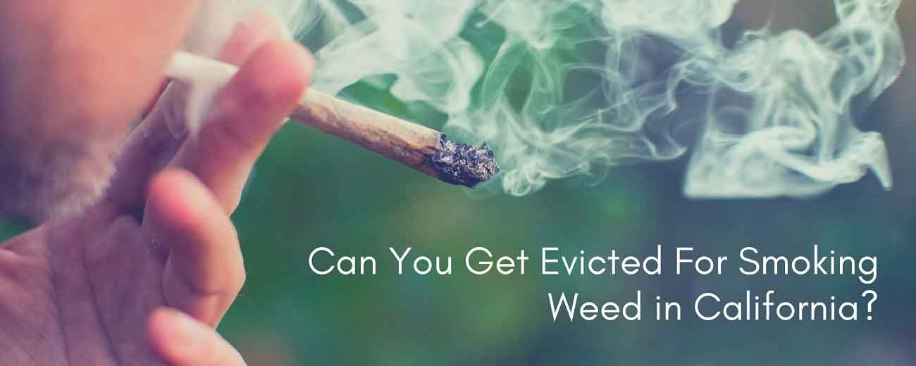 Can You Get Evicted If Caught Smoking Cannabis In California