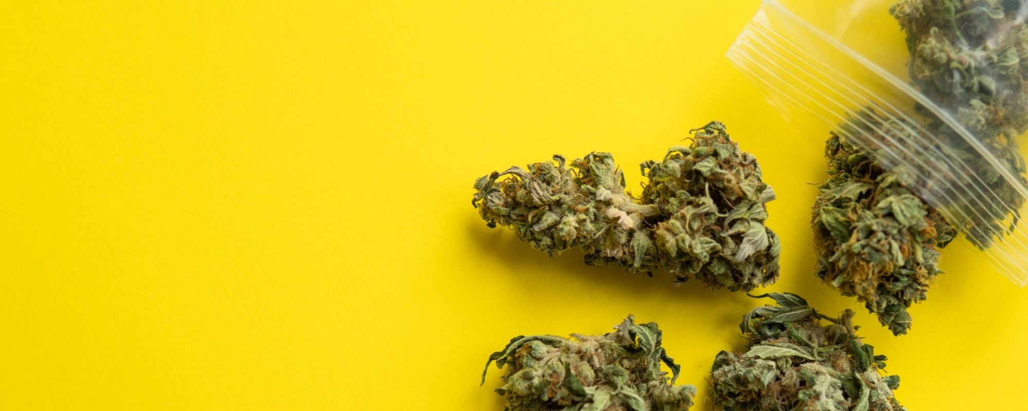 A Guide To Understanding Medical Marijuana For Depression