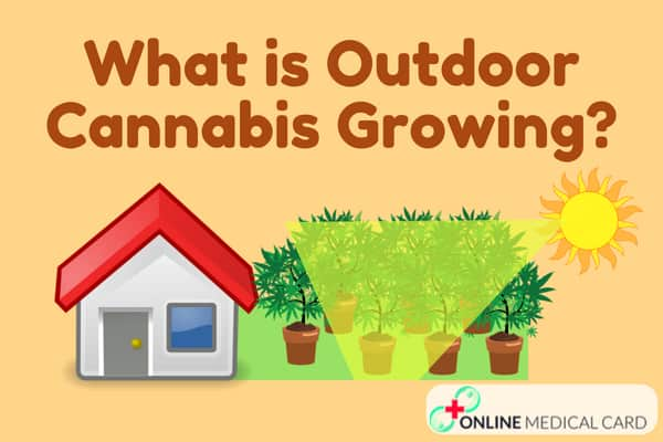 What is Outdoor Growing?
