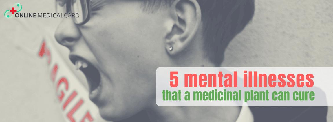 5 Mental Illnesses That A Medicinal Plant Could Cure