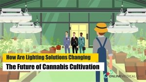 Lightings for cannabis cultivations