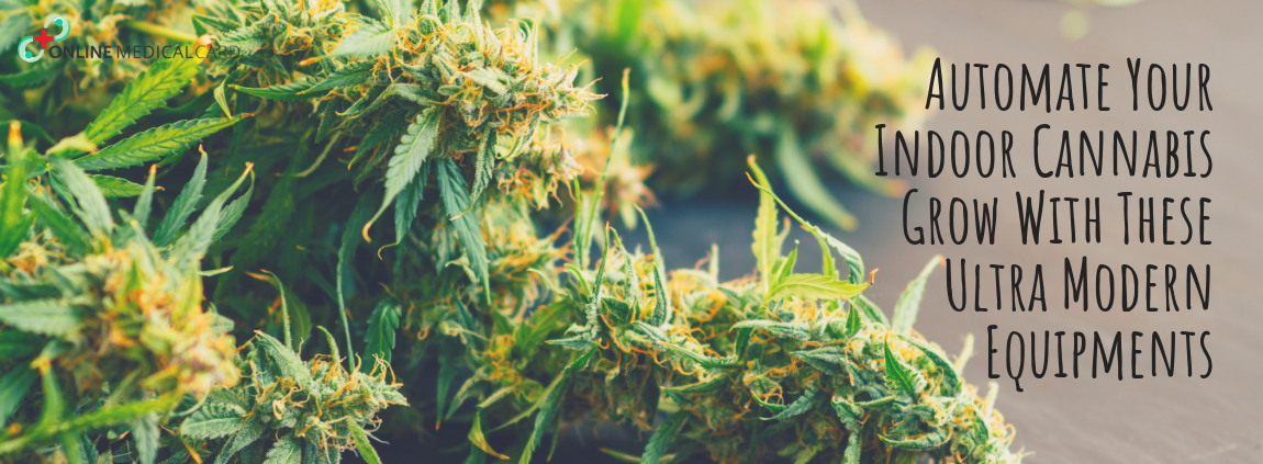 AUTOMATE YOUR INDOOR CANNABIS GROW WITH 3 ULTRA MODERN EQUIPMENT