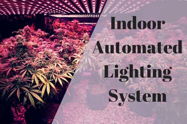 Indoor Automated Lighting System