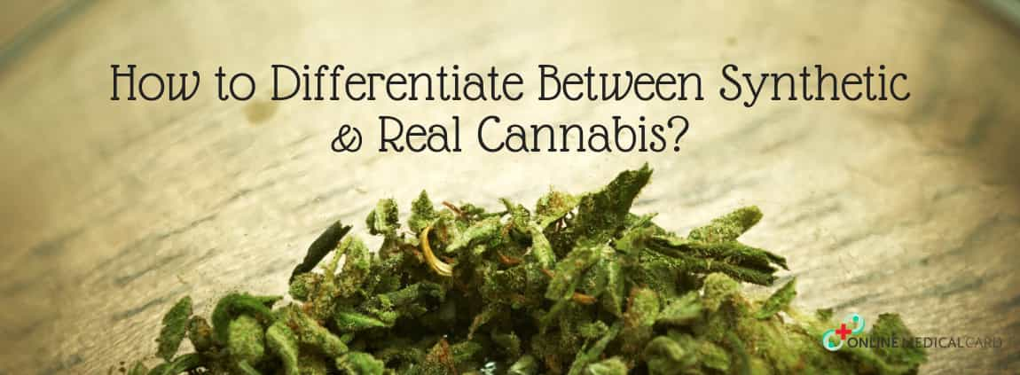 HOW TO DIFFERENTIATE BETWEEN SYNTHETIC CANNABIS AND REAL CANNABIS