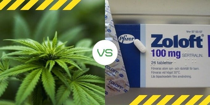 Marijuana vs Zoloft