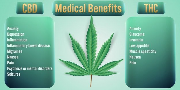 marijuana medical benefits