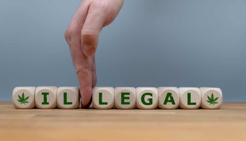 Medical Maijuana Patient Cardholder Registry