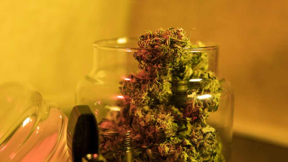 States Where Medical Marijuana Is Legal