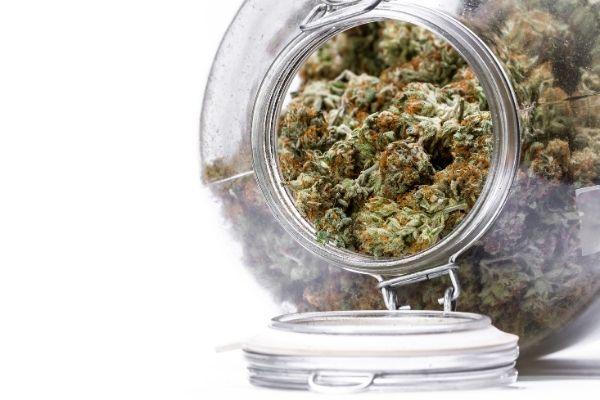 How to store Marijuana