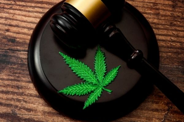 Medical cannabis card In US