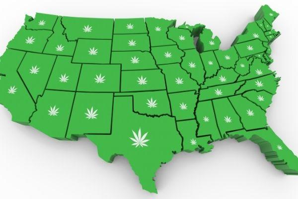 Medical cannabis card In USA