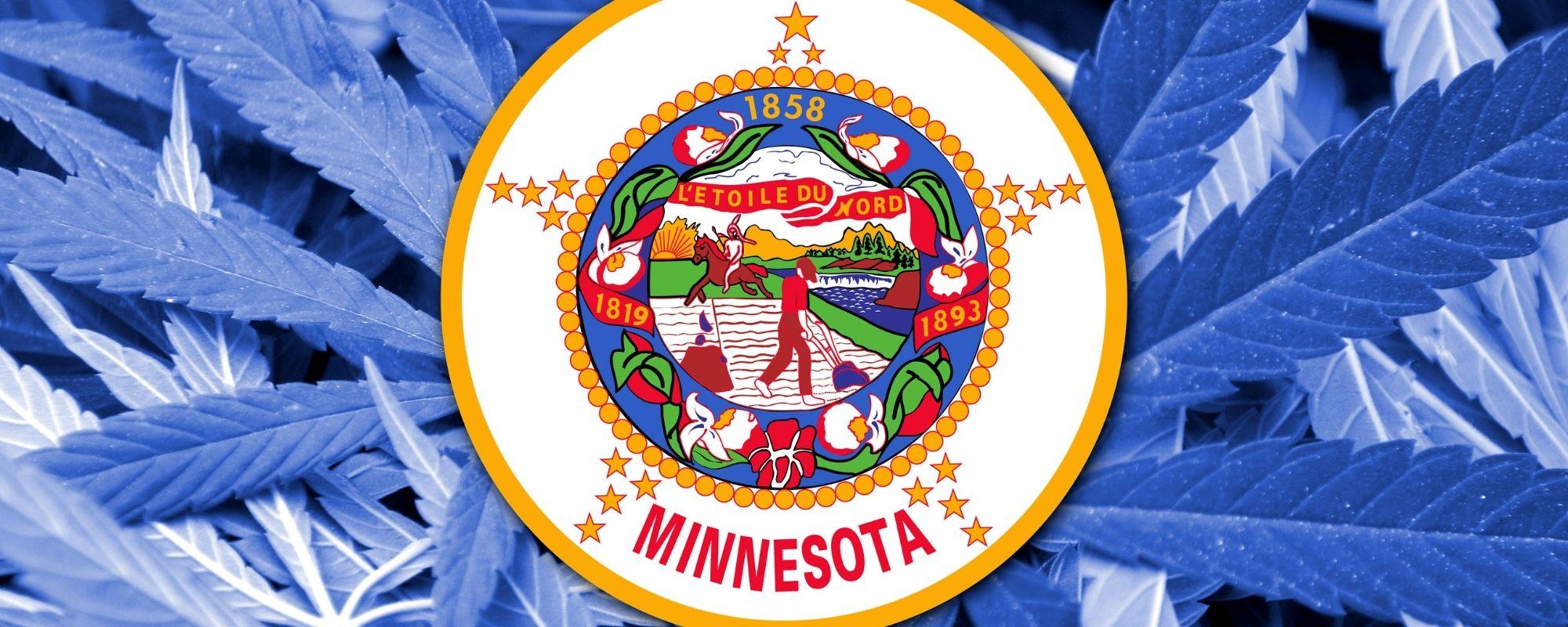 MMJ card in Minnesota