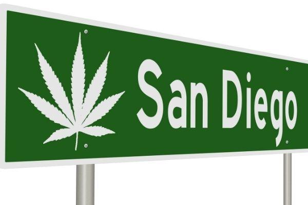 License to Grow 99 Marijuana Plants in San Diego