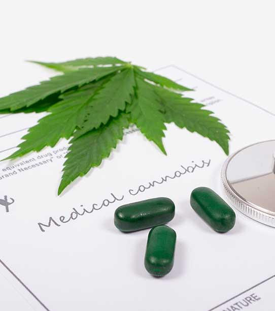 The Cannabis Prescription