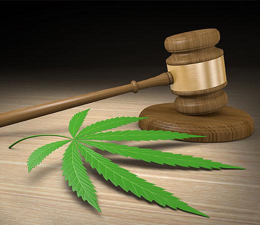 NY Medical Marijuana Doctor Locations