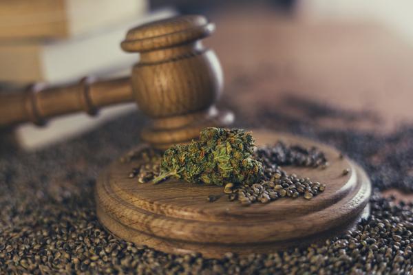medical marijuana laws details