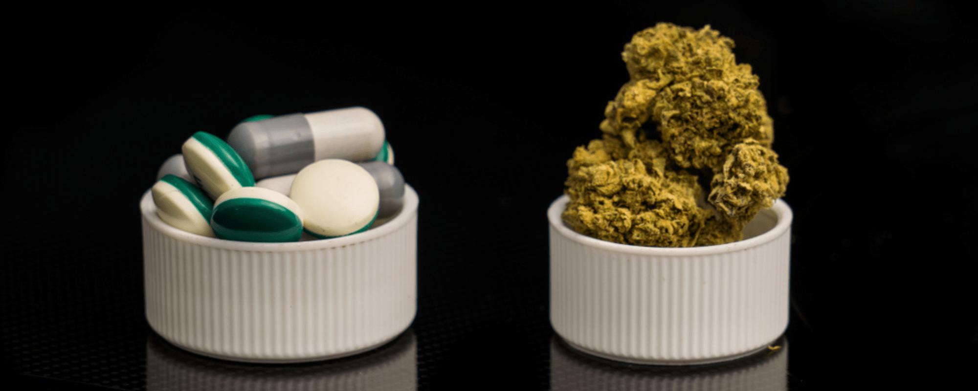 medical marijuana and opioids