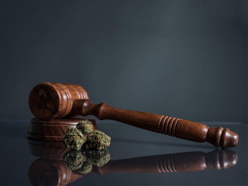 Marijuana Laws in Hayward